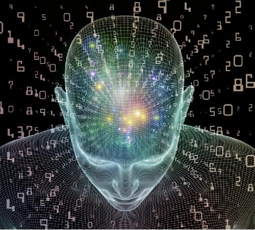память и мозг человека